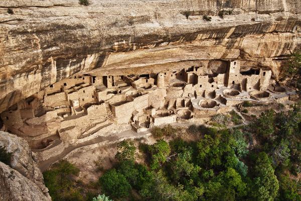 Le radici native nella Mesa Verde