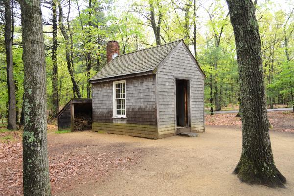 Meditazione e pace nel rifugio segreto di Thoreau