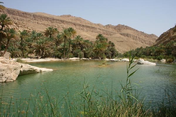 L'oasi in mezzo al nulla