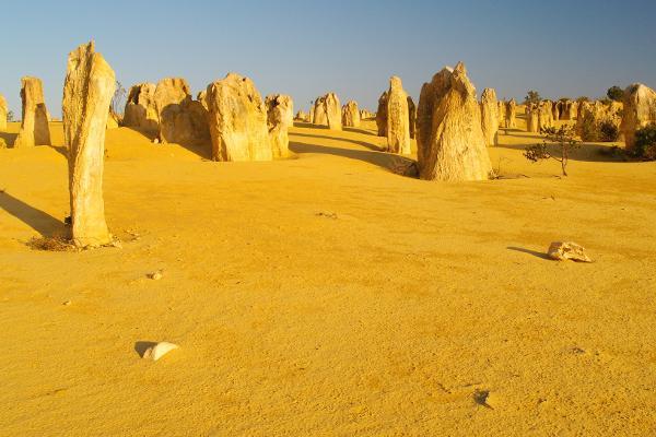 Guglie nel deserto