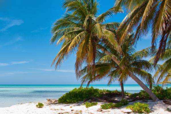 Una spiaggia inebriante