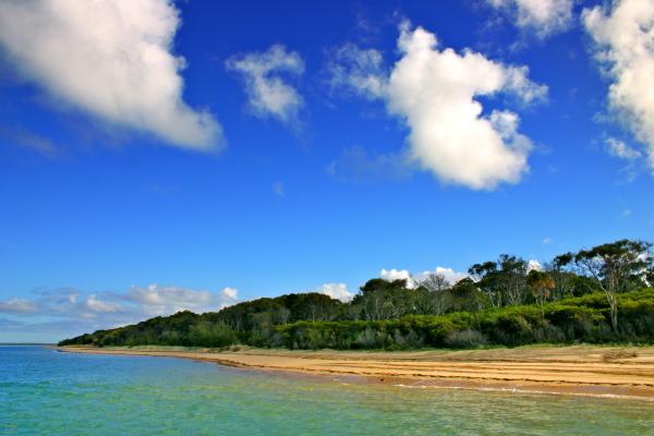 Il canto dell'isola di Fraser