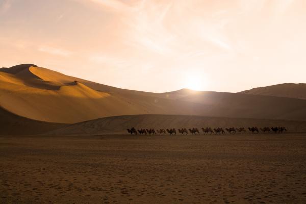 Il respiro del deserto oltre le dune