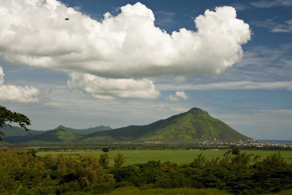 La sentinella di Mauritius