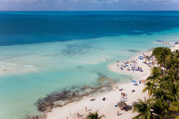 Purificazione caraibica