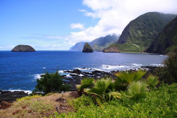 La più selvaggia delle Hawaii