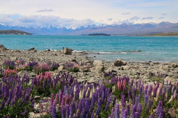 Un lago che sembra Paradiso