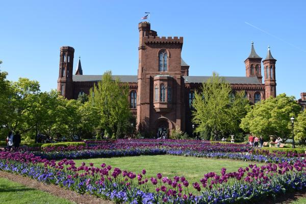 Il castello della scienza