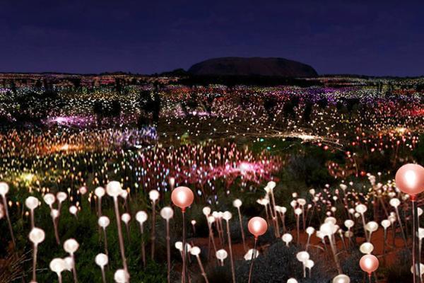 Le luci di Uluru